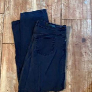 Gloria Vanderbilt Navy Blue Casual Pants